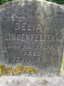 2013-484-lingenfelter,-delia