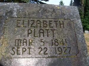 2013-679-platt,-elizabeth