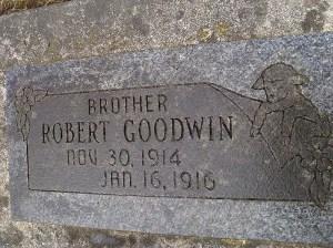 2013-262-goodwin,-robert