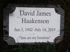 Haakenson-David